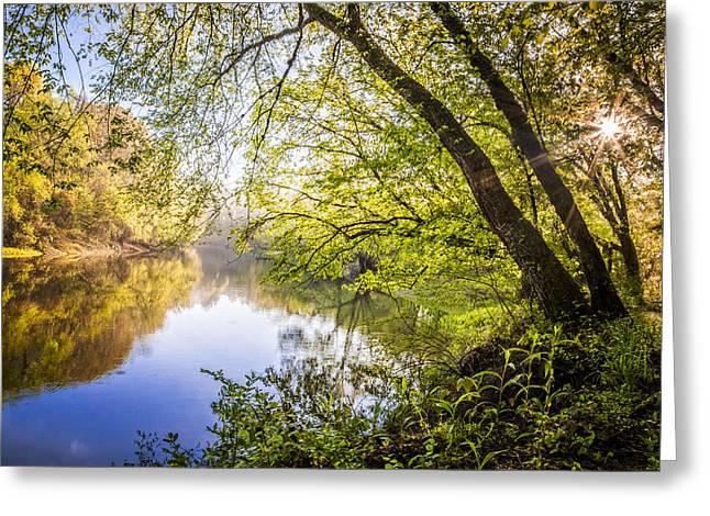 Pond In Park Greeting Cards - Unforgetable Greeting Card by Debra and Dave Vanderlaan
