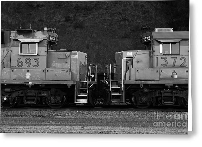 Boxcars Greeting Cards - Union Pacific Locomotive Trains . 7D10574 . black and white Greeting Card by Wingsdomain Art and Photography