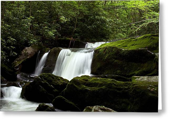 Tennessee River Digital Greeting Cards - Unnamed Waterfall Little River Greeting Card by Amanda Kiplinger