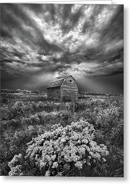 Unsettled Greeting Card by Phil Koch