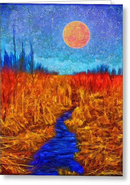 Stream Digital Greeting Cards - Moonlit Wilderness - Colorado Stream In Boulder County Greeting Card by Joel Bruce Wallach