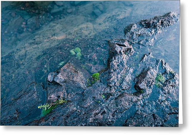 Exposure Greeting Cards - Untitled 8 Greeting Card by Thomas Wilder