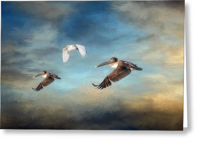 Seabirds Greeting Cards - Up and Away Greeting Card by Kim Hojnacki
