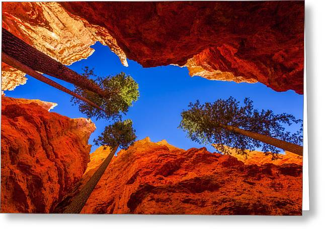 Southern Utah Greeting Cards - Up From Wall Street Greeting Card by Chad Dutson