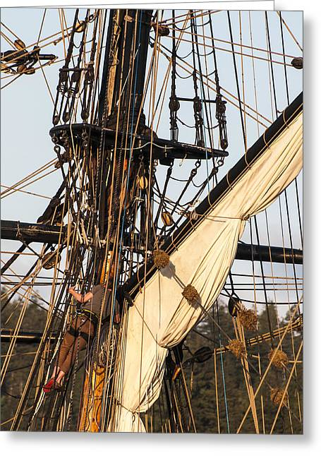 Tall Ships Greeting Cards - Up In the Rigging Greeting Card by Robert Potts