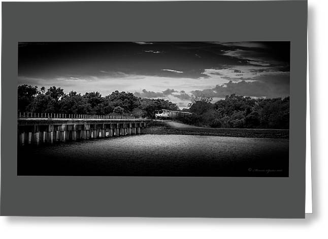 Up To Speed-b/w Greeting Card by Marvin Spates