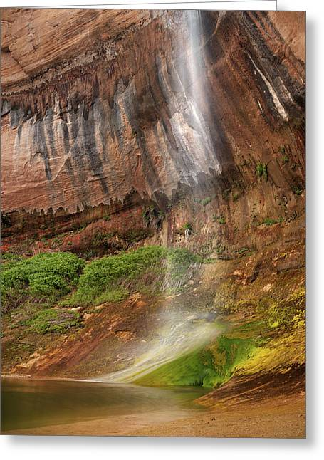 Escalante National Monument Greeting Cards - Upper Calf Creek Falls Greeting Card by Leland D Howard