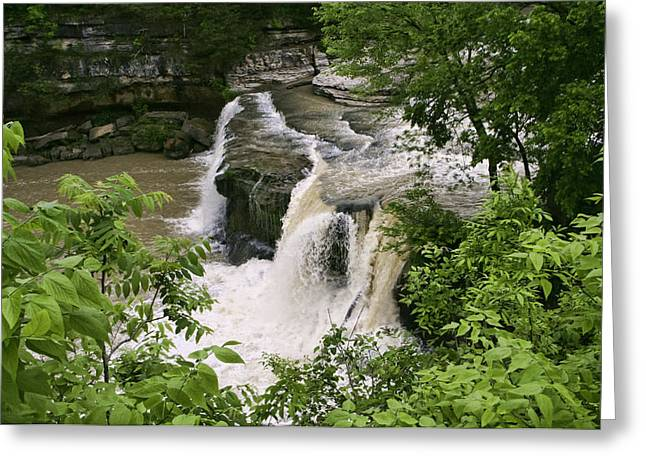 Upper Cataract Falls Greeting Card by Phyllis Taylor