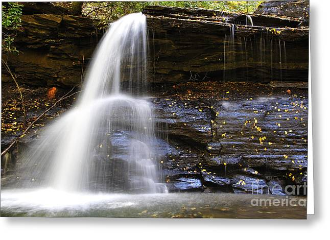 Allegheny Greeting Cards - Upper Falls Holly River State Park Greeting Card by Thomas R Fletcher
