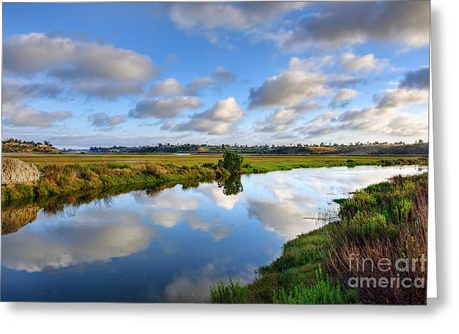 California Beaches Greeting Cards - Upper Newport Bay Nature Preserve Greeting Card by Eddie Yerkish