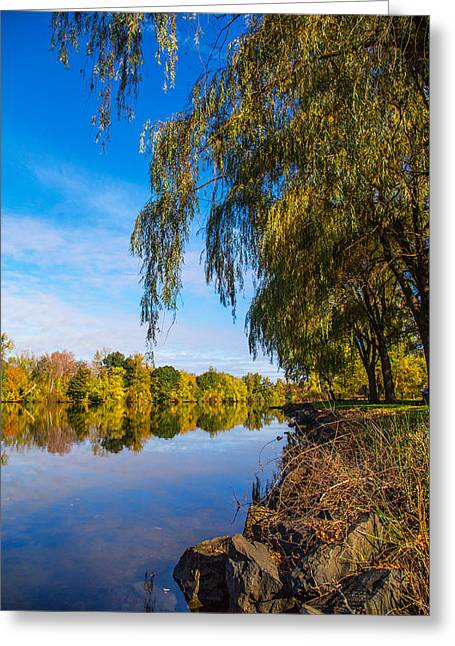 Early Autumn Greeting Cards - UpStream View Greeting Card by Karol  Livote