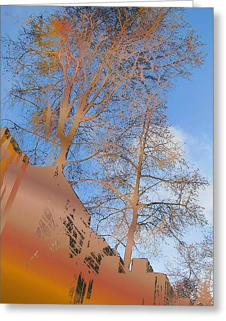Urban Canyon Greeting Card by Tim Allen