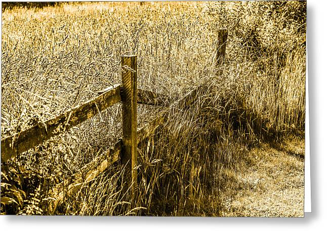 Thatch Digital Greeting Cards - Urban Country Greeting Card by Toppart Sweden