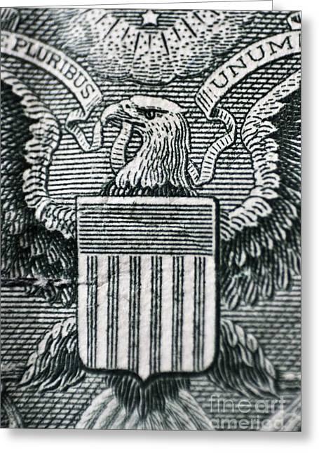Financially Greeting Cards - US dollar eagle Greeting Card by Dan Radi