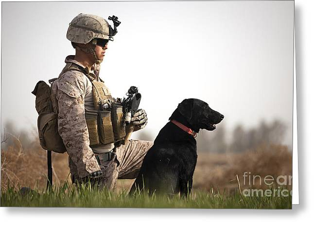 Dog Handler Greeting Cards - U.s. Marine Holds Security In A Field Greeting Card by Stocktrek Images