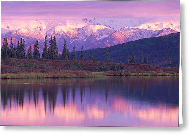Denali National Park Greeting Cards - Usa, Alaska, Denali National Park Greeting Card by Panoramic Images