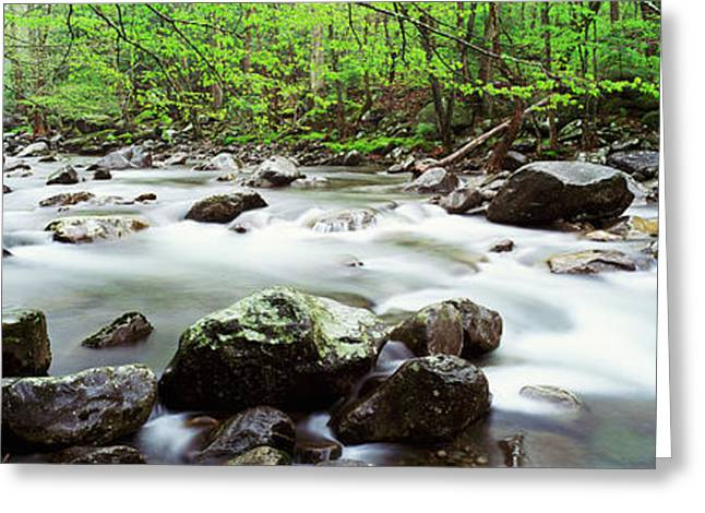 Tennessee River Greeting Cards - Usa, Tennessee, Great Smoky Mountains Greeting Card by Panoramic Images
