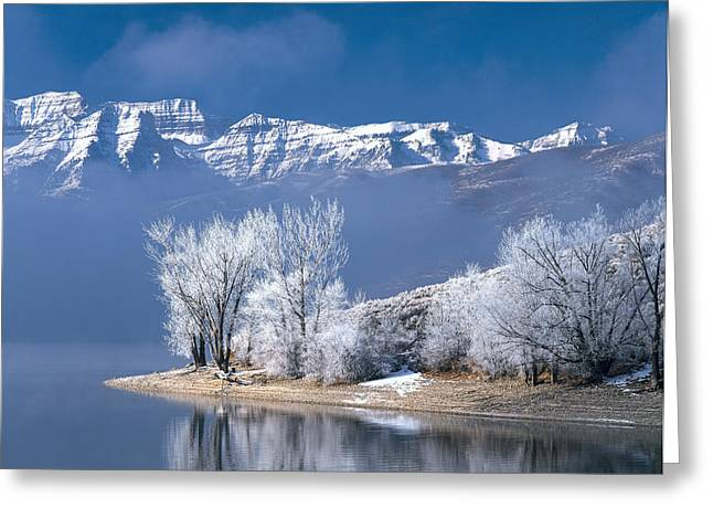 Usa, Utah, Deer Creek State Park Greeting Card by Panoramic Images