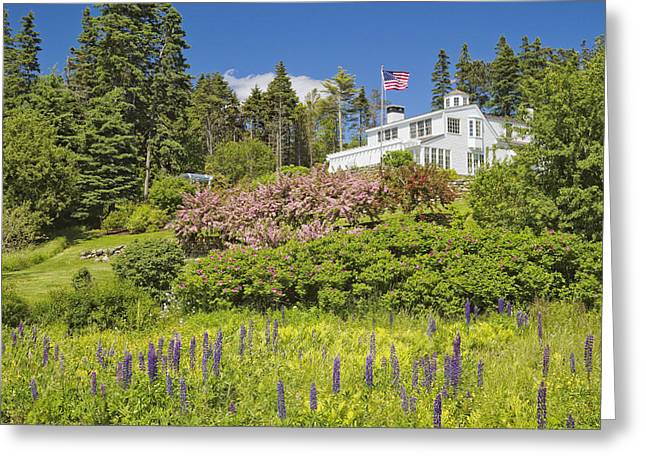 Spring In Maine Greeting Cards - Vacation House on Coast of Maine Greeting Card by Keith Webber Jr