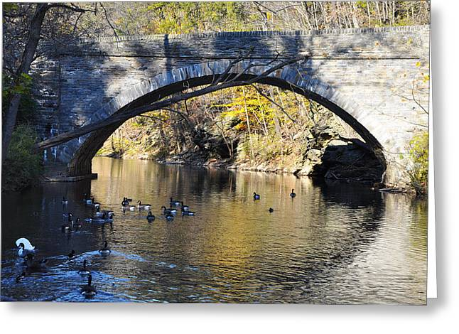 Wissahickon Greeting Cards - Valley Green Bridge Greeting Card by Bill Cannon