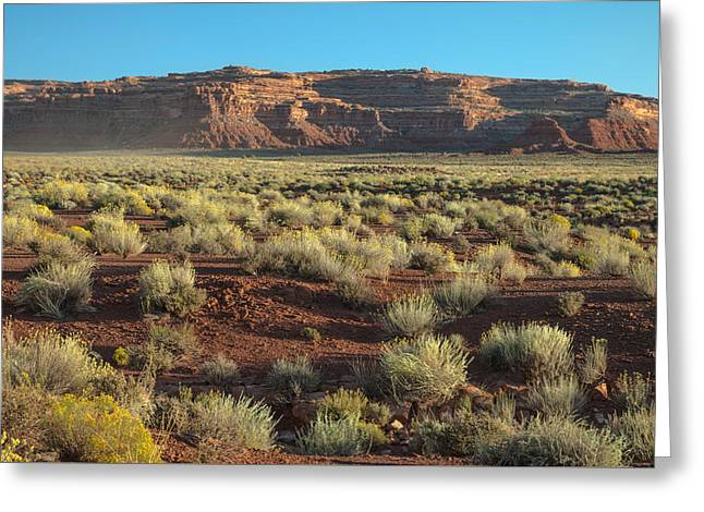 Valley Of The Gods Greeting Card by Joseph Smith