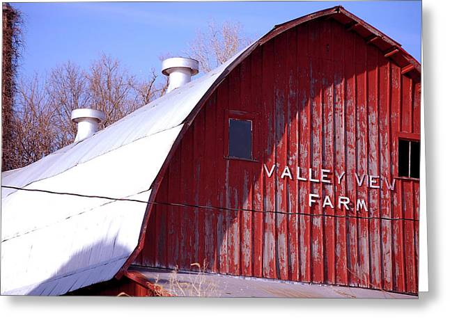 Valley View Greeting Card by Jame Hayes
