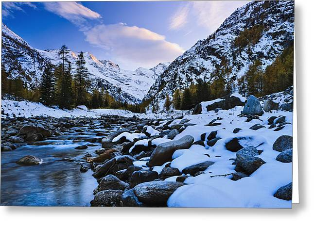 Trees Reflecting In Water Greeting Cards - Valnontey Torrent, Gran Paradiso Greeting Card by Yves Marcoux