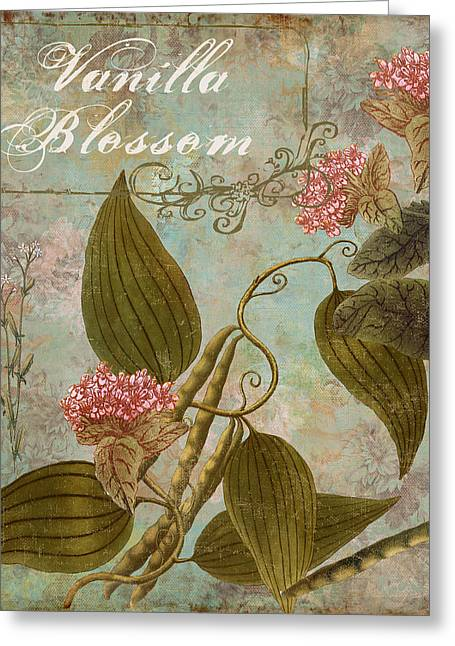 Vanilla Greeting Cards - Vanilla Blossom Greeting Card by Mindy Sommers