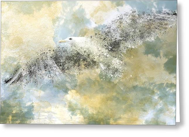 Vanishing Seagull Greeting Card by Melanie Viola