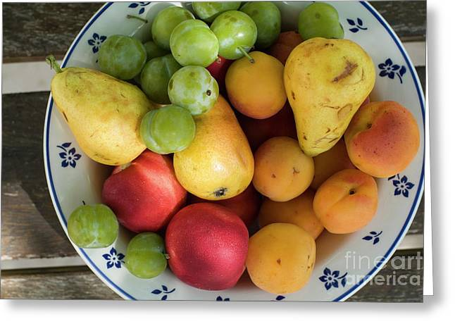 Apricot Greeting Cards - Variety of fresh summer fruit on a plate Greeting Card by Sami Sarkis