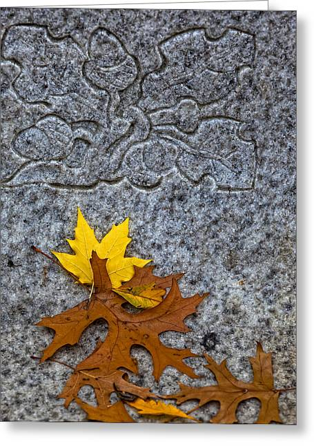Fallen Leaf Greeting Cards - Varying Degrees of Permanance Greeting Card by Robert Ullmann