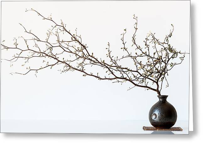 Vase Greeting Cards - Vase And Branch Greeting Card by Prbimages