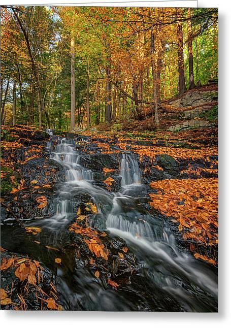 Vaughan Brook In Autumn Greeting Card by Rick Berk