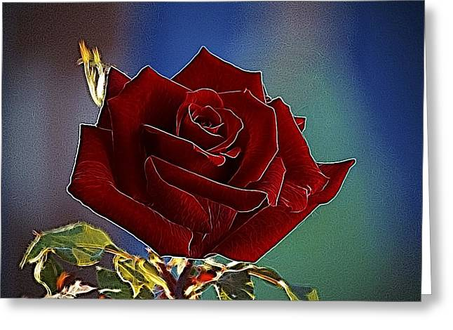 Bordo Digital Greeting Cards - Velvet Rose Greeting Card by Alexey Bazhan