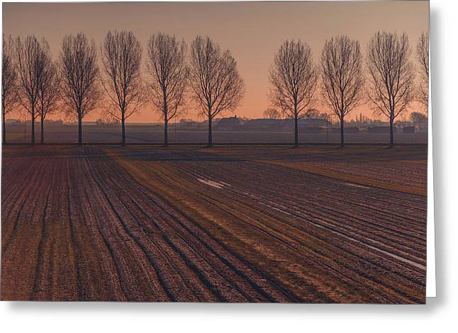 Autumn In The Netherlands Greeting Cards - Velvet Sunset on Zen Road Greeting Card by Jenny Rainbow