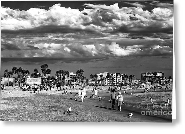 California Beach Art Greeting Cards - Venice Beach Walk Greeting Card by John Rizzuto