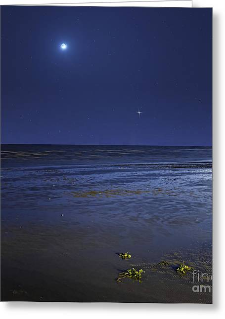 Ocean Images Greeting Cards - Venus Shines Brightly Greeting Card by Luis Argerich