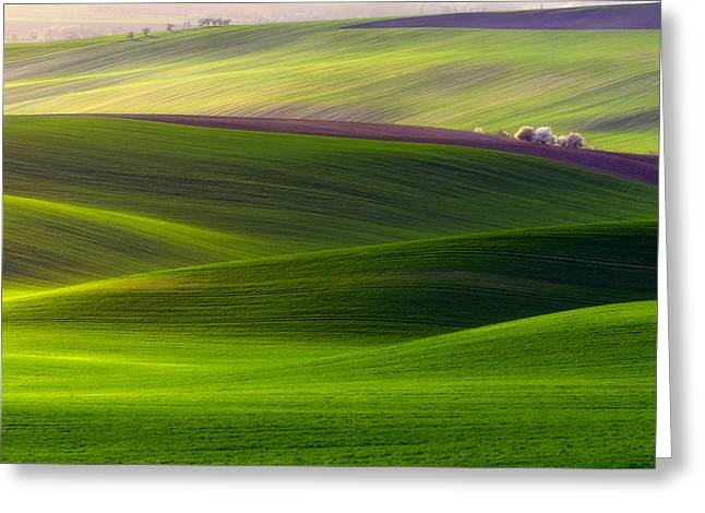Moravia Greeting Cards - Verdant Land Greeting Card by Piotr Krol (bax)