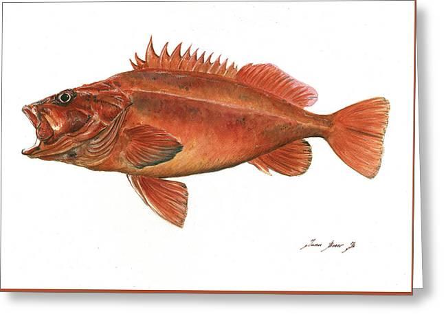 Vermilion Rockfish Greeting Card by Juan Bosco
