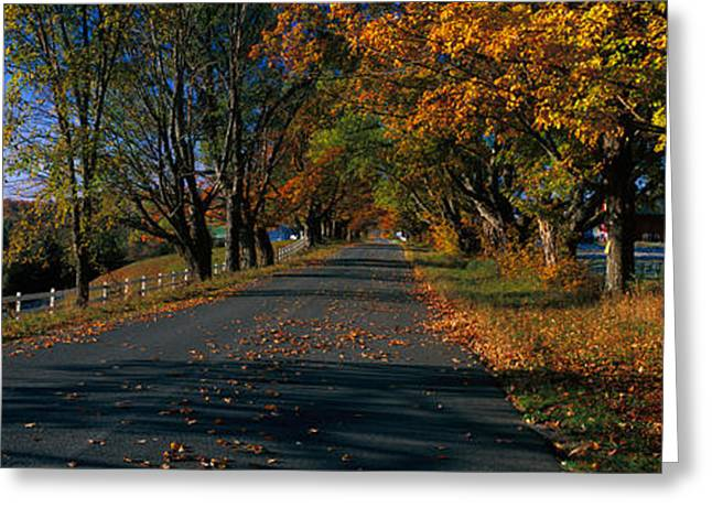 Vermont Photographs Greeting Cards - Vermont Country Road In Autumn Greeting Card by Panoramic Images