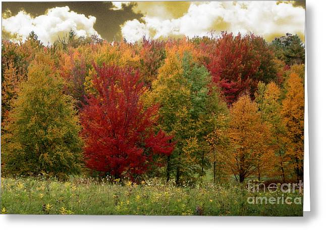 Vermont Drive Greeting Card by Mindy Sommers