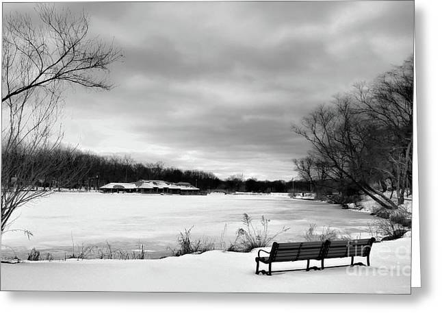 Valerie Morrison Greeting Cards - Verona Park in Winter Greeting Card by Valerie Morrison