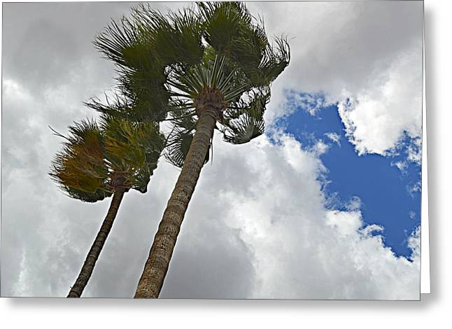 Turbulent Skies Greeting Cards - Raging Winds Greeting Card by Wendy Martinez