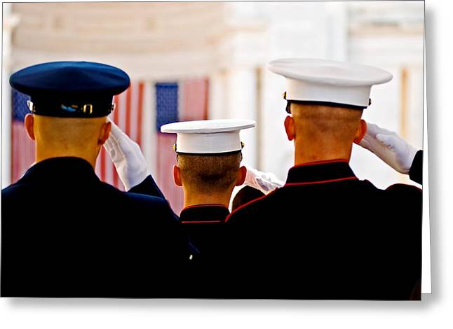 Reverence Greeting Cards - Veterans Day salute Greeting Card by Bill Jonscher