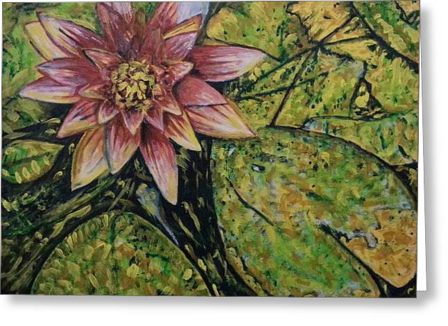 Water Lilly Greeting Cards - Vibrant Pink Waterlilly Greeting Card by Michael African Visions