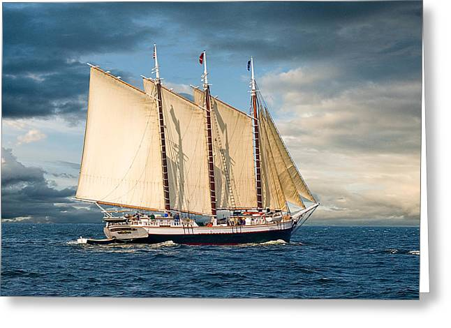 Recently Sold -  - Schooner Greeting Cards - Victory Chimes Greeting Card by Fred LeBlanc