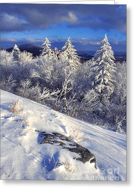 View Along Highland Scenic Highway Greeting Card by Thomas R Fletcher
