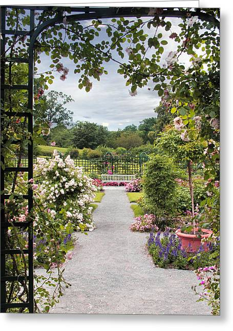 Trellis Digital Greeting Cards - View from a Pergola Greeting Card by Jessica Jenney