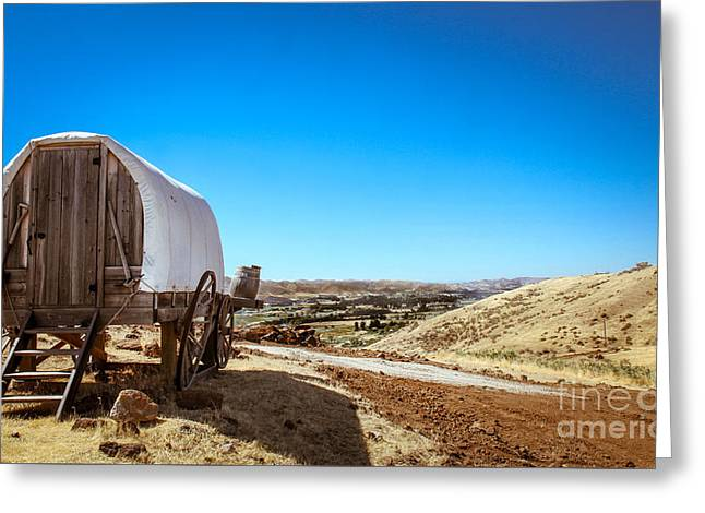 Haybales Greeting Cards - View From A Sheep Herder Wagon Greeting Card by Robert Bales