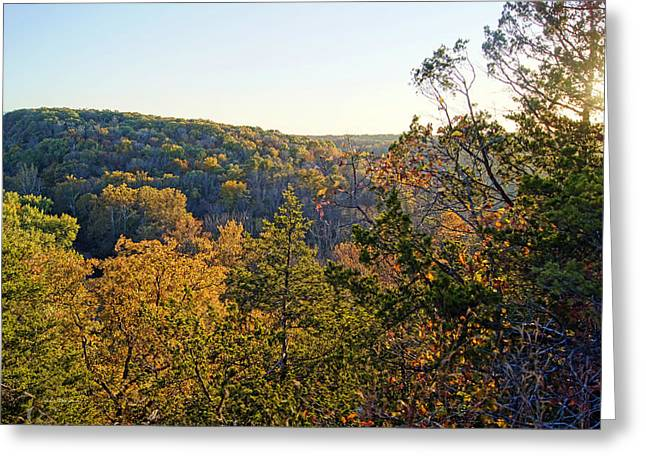 Southern Boone County Greeting Cards - View From Backbone Road Greeting Card by Cricket Hackmann